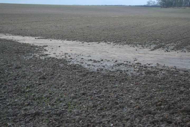 Heavy rain causes sand to come to the surface (even on clay soils).  The sand coats the grass, the horse eats the grass.....